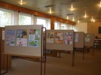 Výstava - knihovny_6